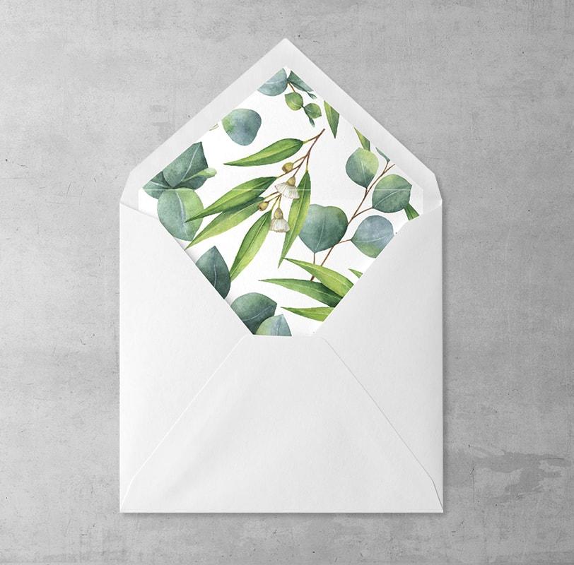 Eukaliptus Wklejka