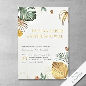 Liście palmowe - główne zdjęcie